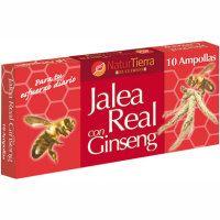Ginseng rojo NATUR TIERRA, caja 10 viales