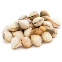 Berberecho, bolsa 1 kg